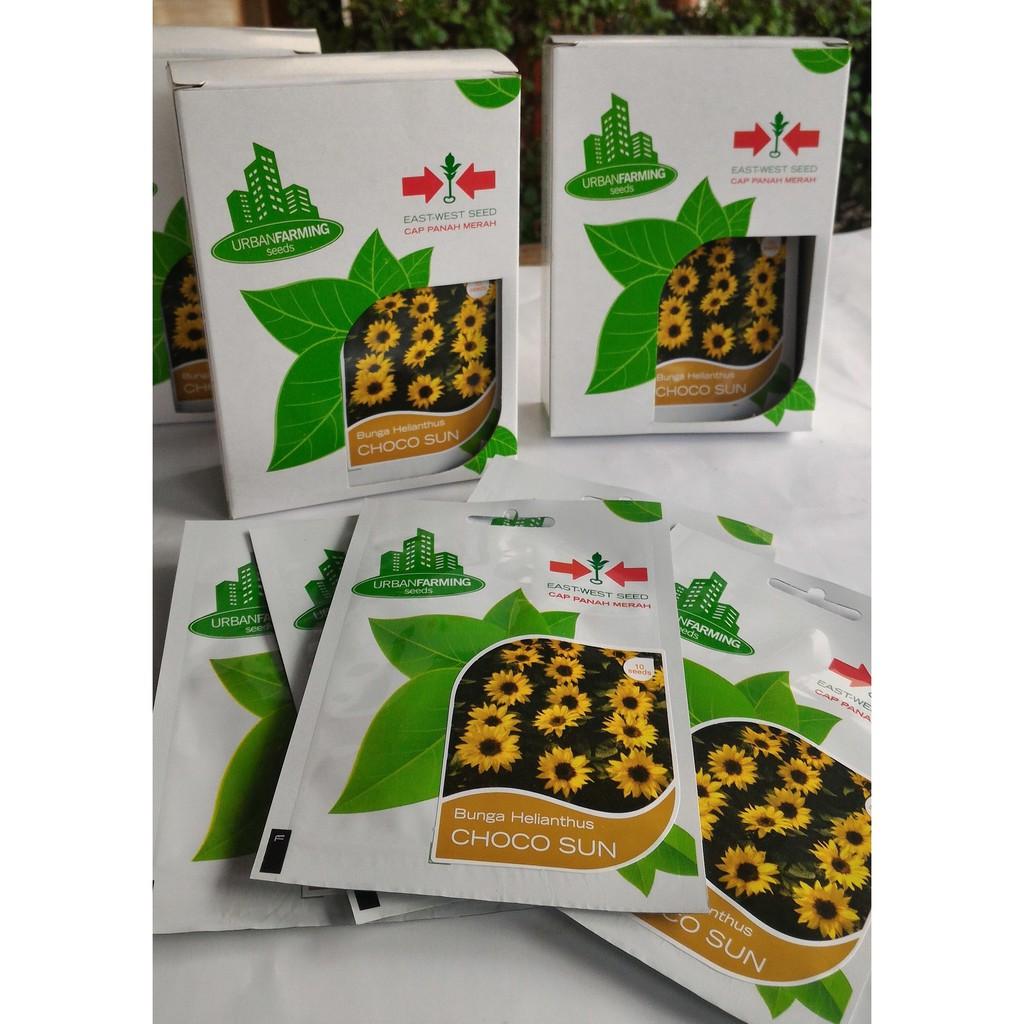Benih Bunga Pukul 4 Kuning Shopee Indonesia Labu Ipb Lk1