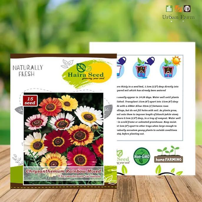 Jual Benih-Bibit Bunga Krisan Rainbow Mix (Haira Seed) | Shopee Indonesia