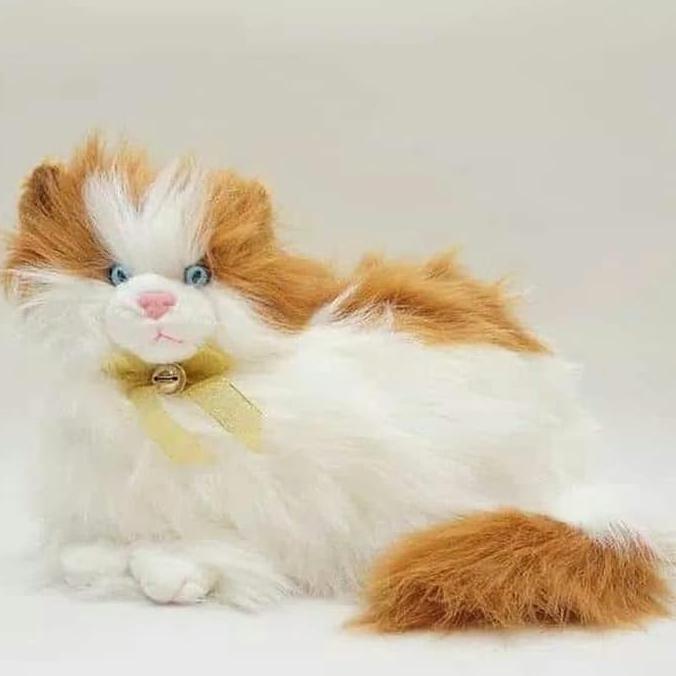 Boneka Kucing Anggora Lucu Paling Lengkap Shopee Indonesia