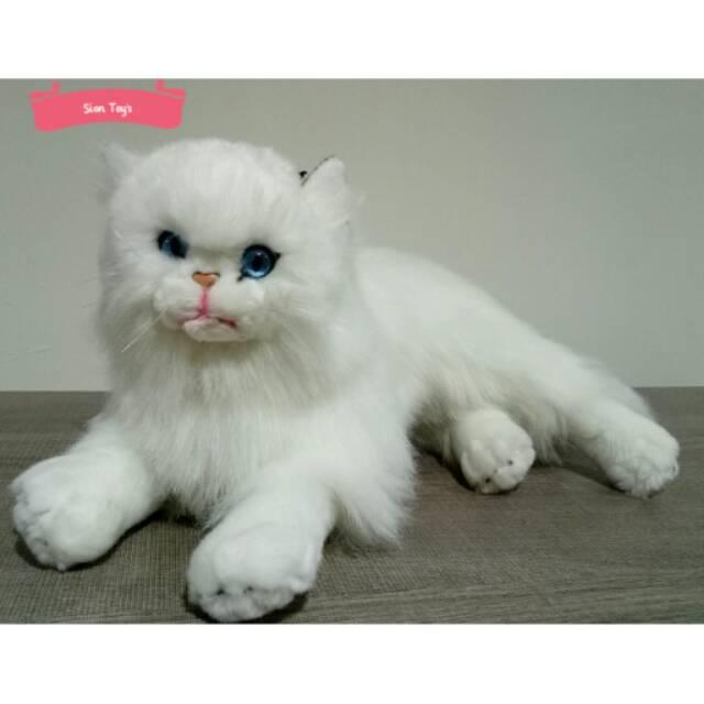 Boneka Kucing Anggora Mata Biru Shopee Indonesia