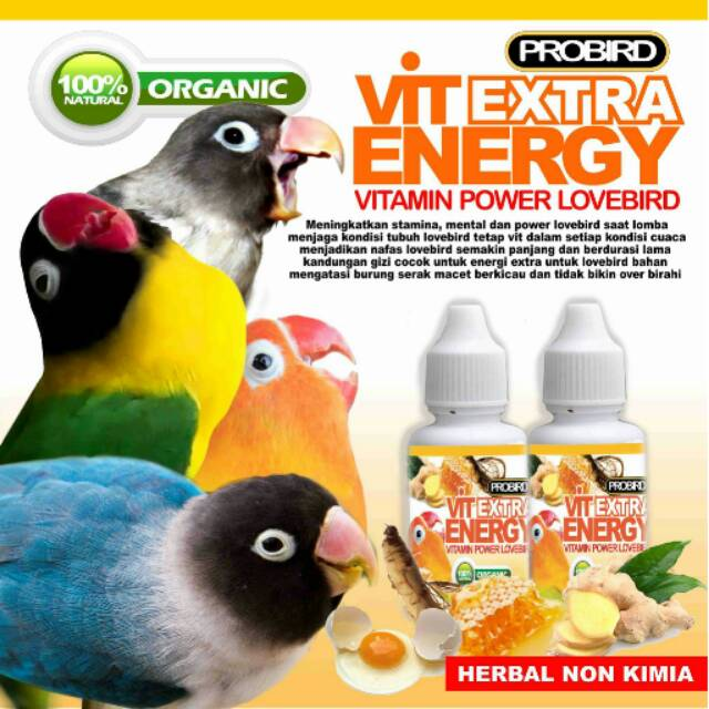 Vit Extra Energy Pro Bird Khusus Lovebird Vitamin Multivitamin Pakan Shopee Indonesia