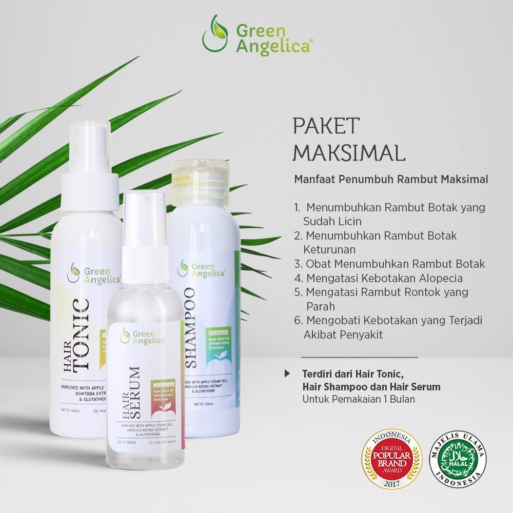 Green Angelica Paket Maximal Penumbuh Rambut Alami, Obat Botak Cepat Menumbuhkan Rambut Rontok AMPUH
