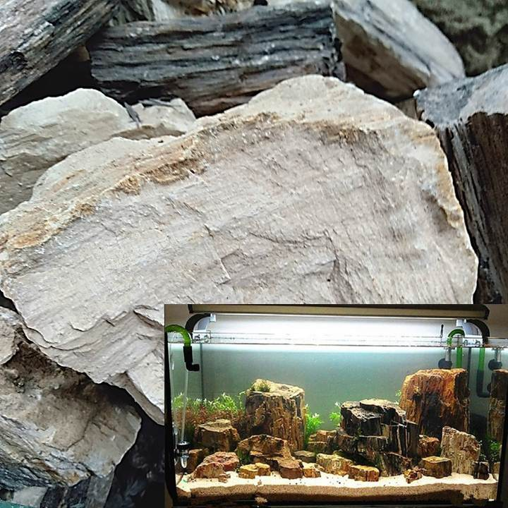 Batu Fosil Kayu Aquascape Aquarium 1kg Shopee Indonesia