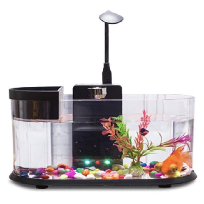 Jual Usb Desktop Akuarium Mini Fish Tank Aquarium Aquascapes Aquascape Limited Shopee Indonesia