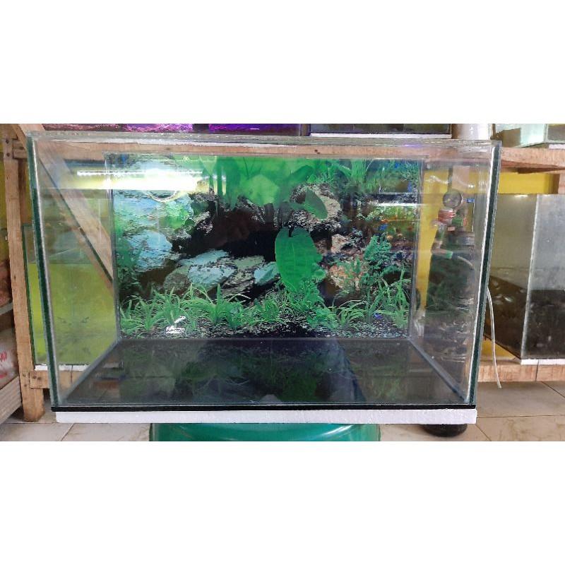 Aquarium 30x20x15