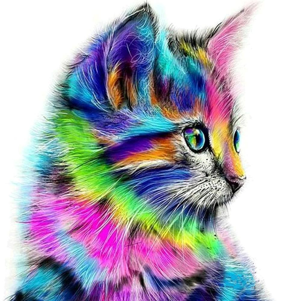 Unduh 94+ Gambar Kucing Warna Warni Paling Baru Gratis