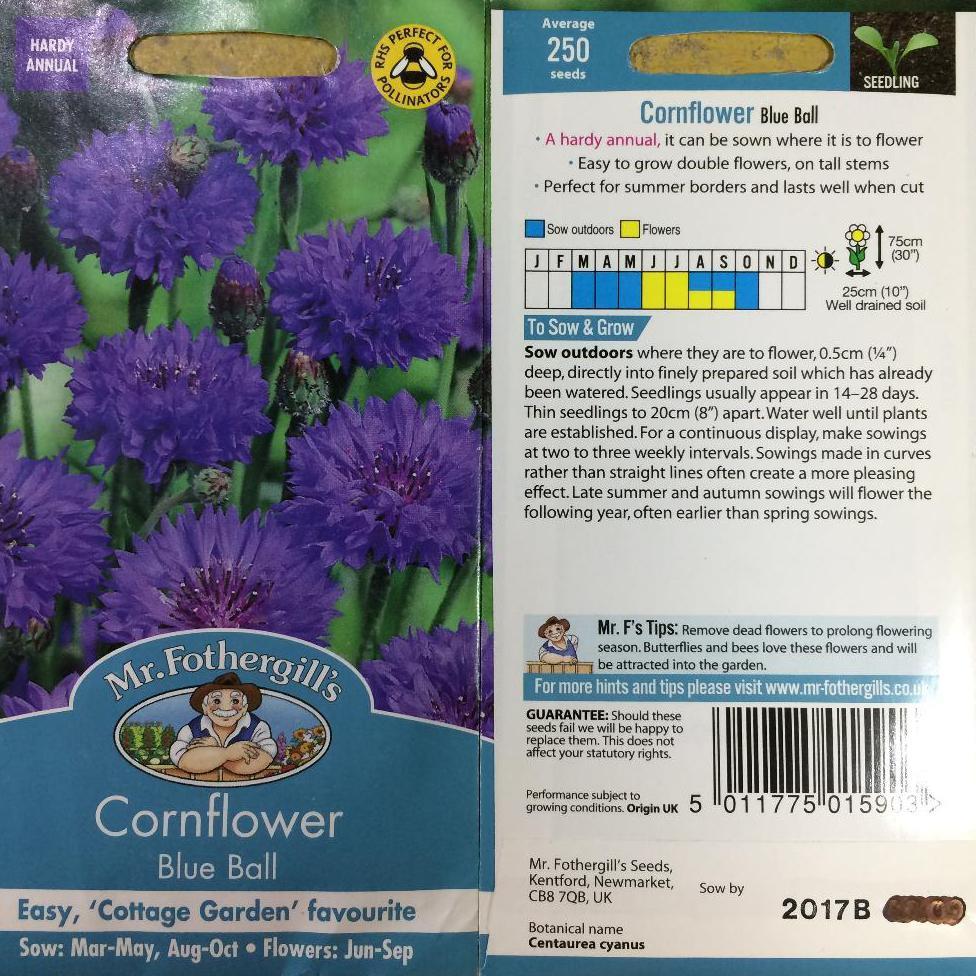 20 Benih Bunga Cornflower Tall Mixed F1 mr fothergills benih tanaman | Shopee Indonesia