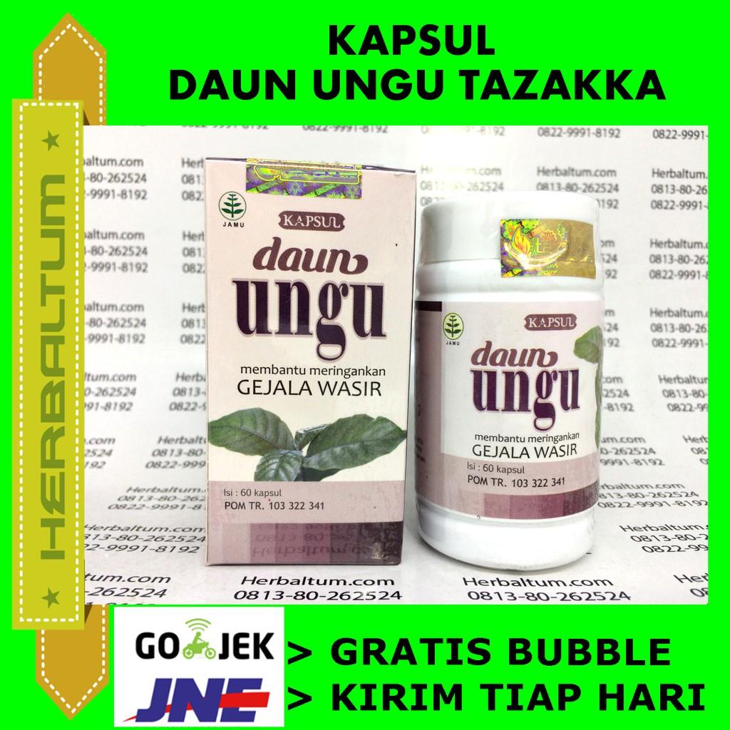 Paket Obat Hernia Dewasa Pria Wanita Herbal Agaricpro Celana Bayi Balita Anak Remaja Dan Pengobatan Alternatif Alami Shopee Indonesia