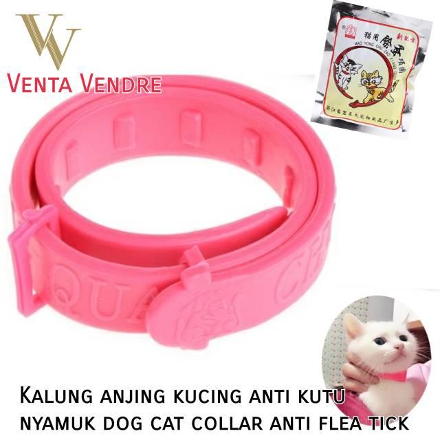 Kalung plus lonceng besar tali prusik gelang collar anjing kucing kelinci musang   Shopee Indonesia