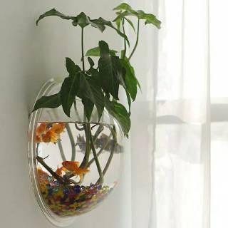 tangki aquarium ikan / akuarium bunga mini model tempel