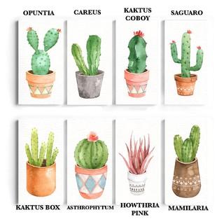 hiasan dinding kaktus cactus wall decor hiasan dinding