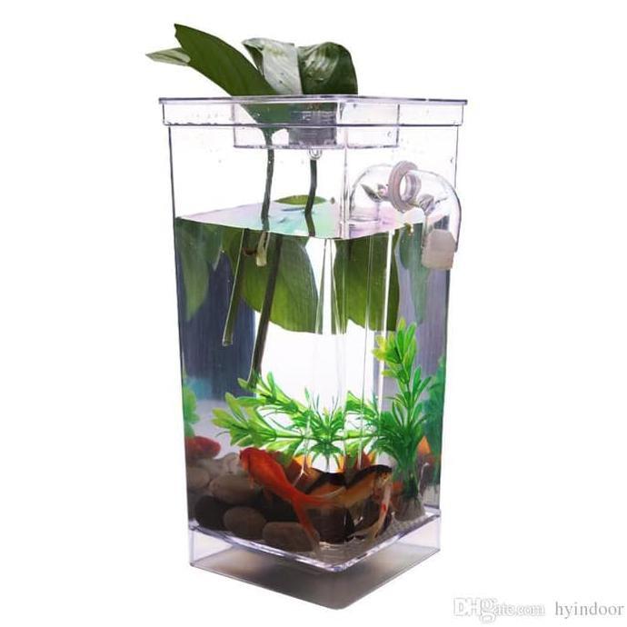 Jual Aquarium My Fun Fish Cleaning Tank Betta Cupang Diminati Banget Shopee Indonesia
