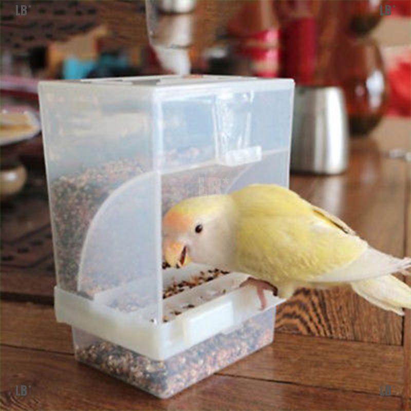 Lb Wadah Makanan Minuman Dengan Bahan Akrilik Dan Gambar Burung