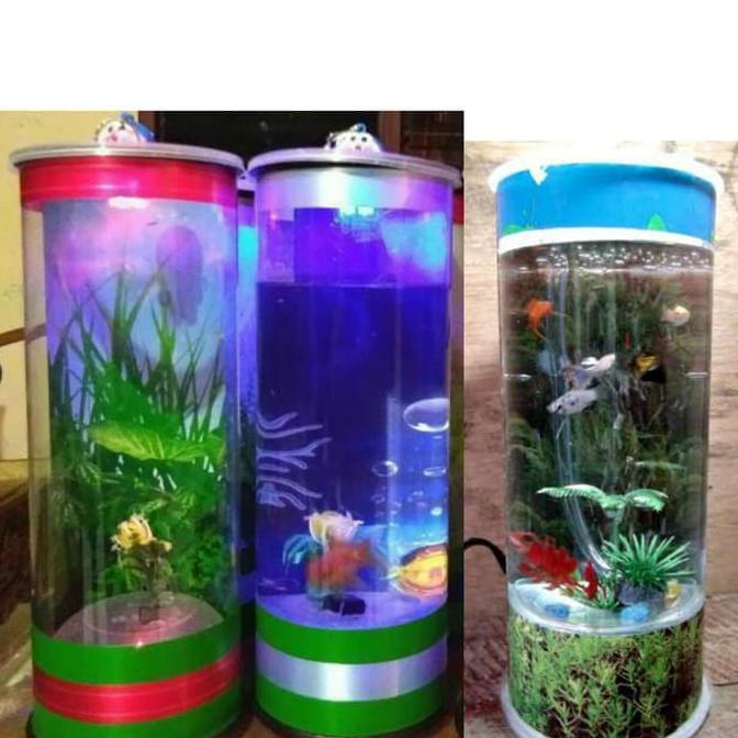 Turun Harga Aquarium Tabung Mini Unik Mika Ukuran Besar Shopee Indonesia