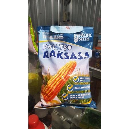 Benih jagung Hibrida PAC 789 RAKSASA 1kg