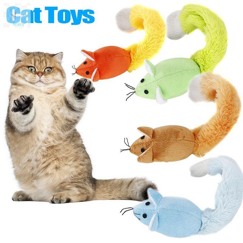 Download 101+  Gambar Kucing Ekor Panjang Terbaru