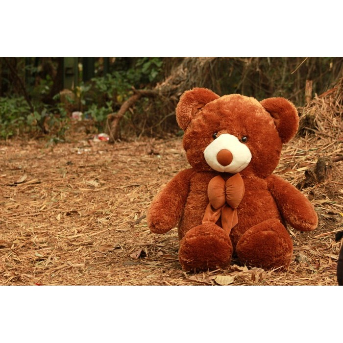 Besar  Boneka Beruang Teddy Bear Cream Super Jumbo 120 CM  6c8d4aafe1