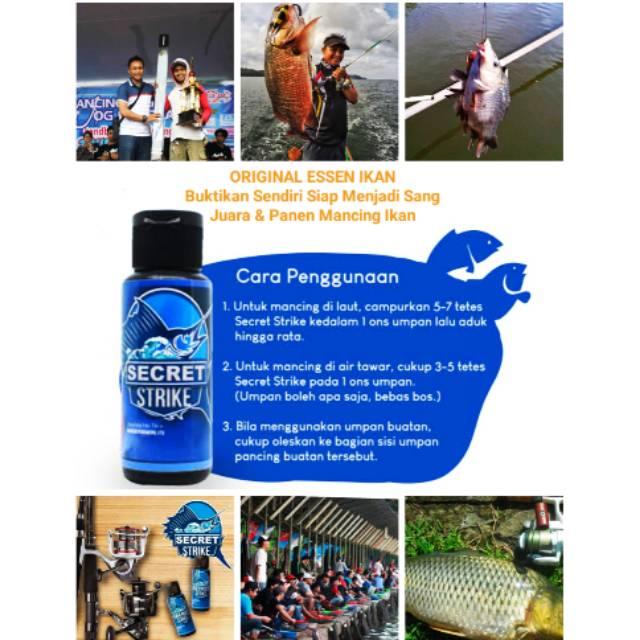 Essen Umpan Ikan Mas Kilo Gebrus Kiloan Lomba Perlombaan Mancing Esen Racikan Ramuan Umpan Jitu Shopee Indonesia
