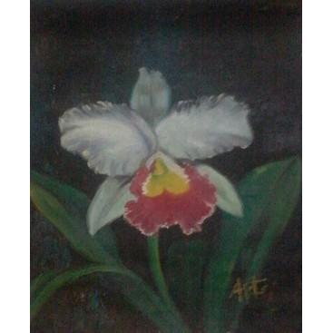 Lukisan Bunga Anggrek Shopee Indonesia