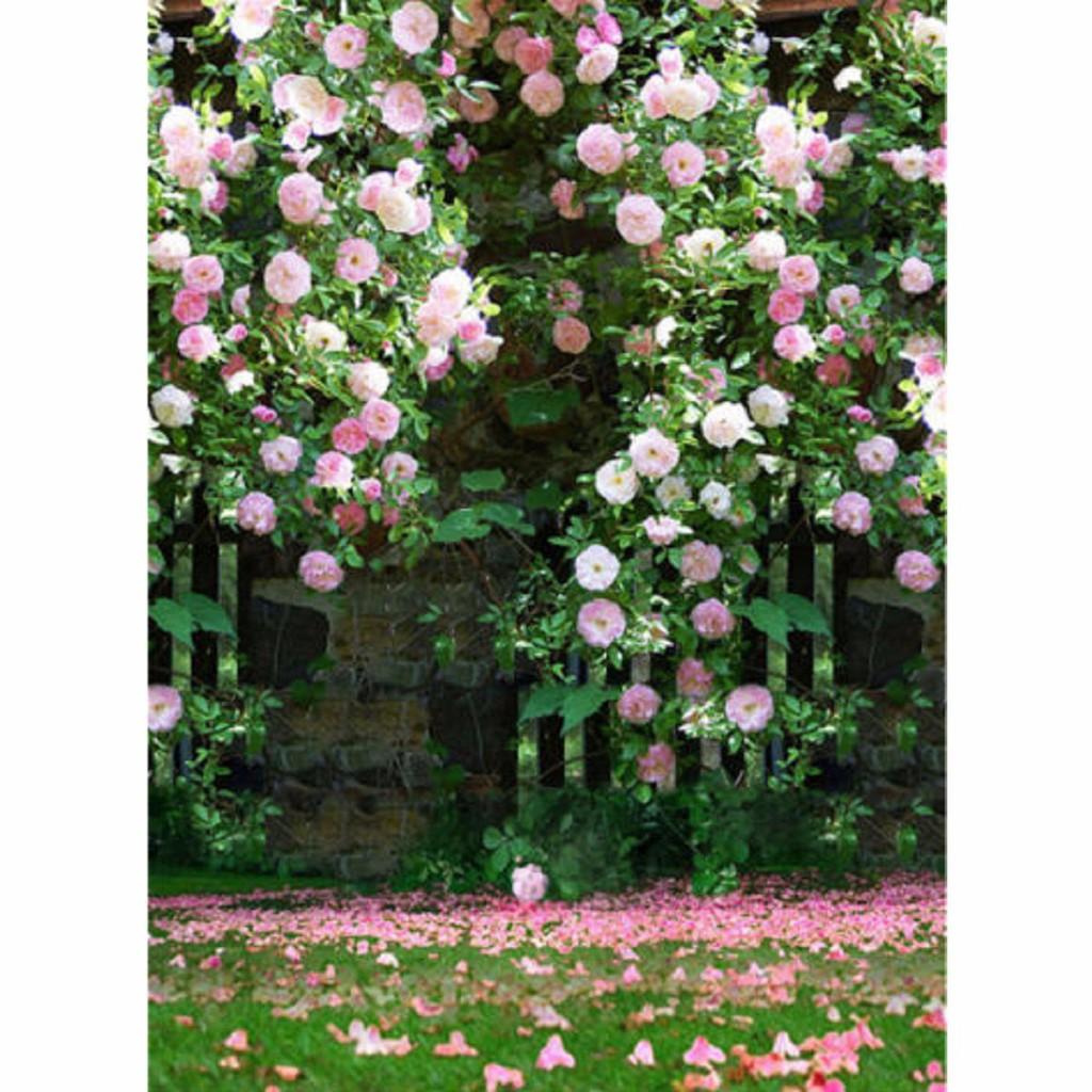 Backdrop Background Motif Taman Bunga Mawar Pink Ukuran 5x7ft