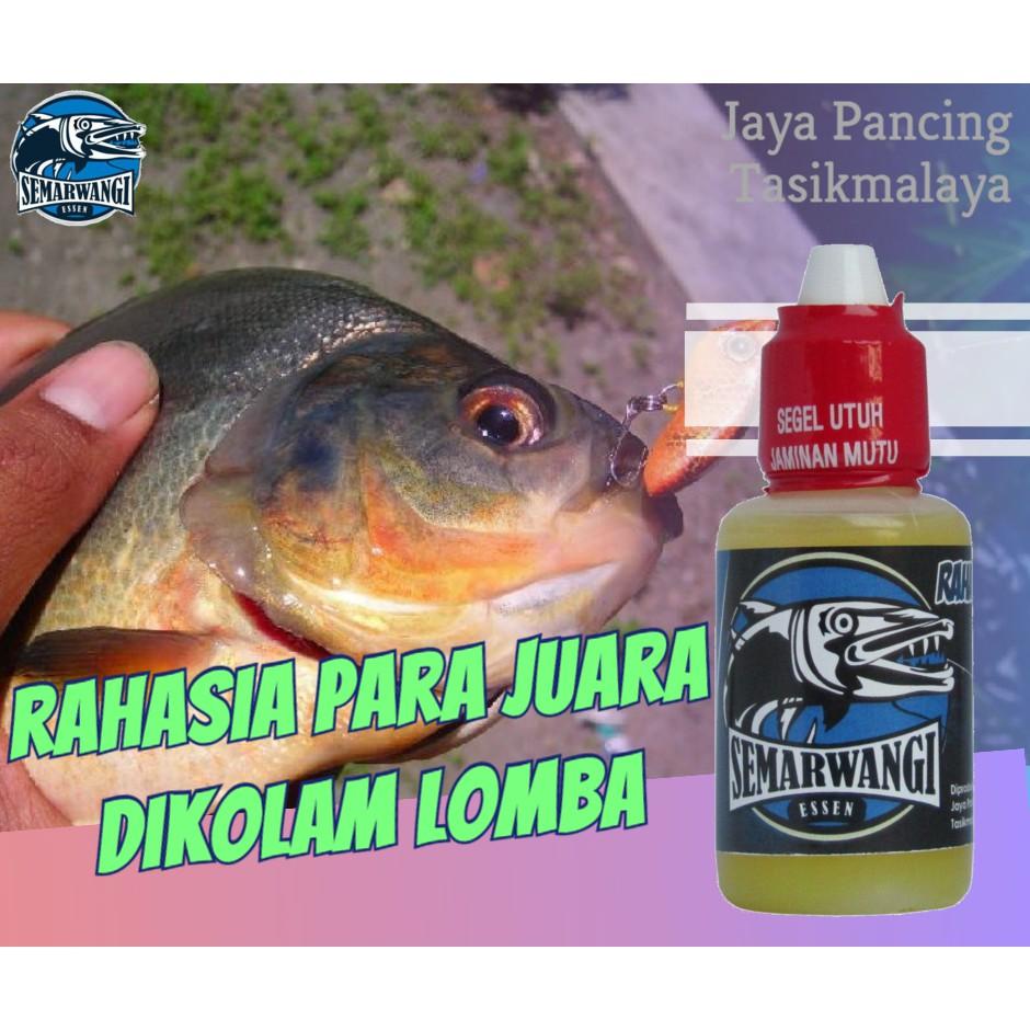 Essen Ikan Bawal Galatama Paling Ampuh Semarwangi Raja Essen Shopee Indonesia
