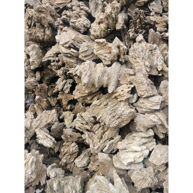 Jual Batu Aquascape Aquarium Dark Stone Bela Stone Fosil Pasir