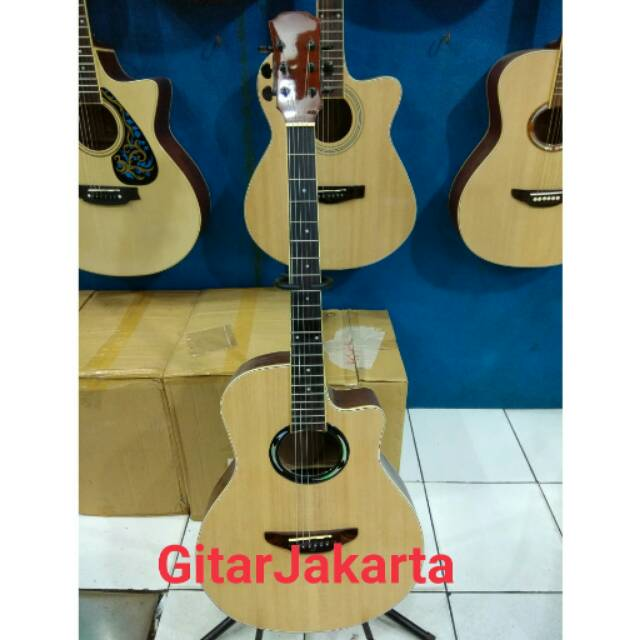 Gitar Akustik Elektrik Natural Merk Taylor Murah Jakarta