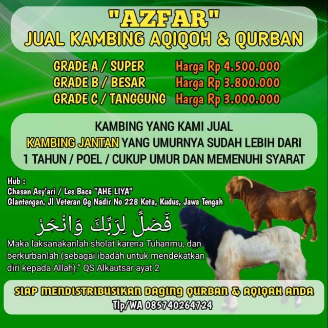 Kambing Qurban Aqiqoh Shopee Indonesia