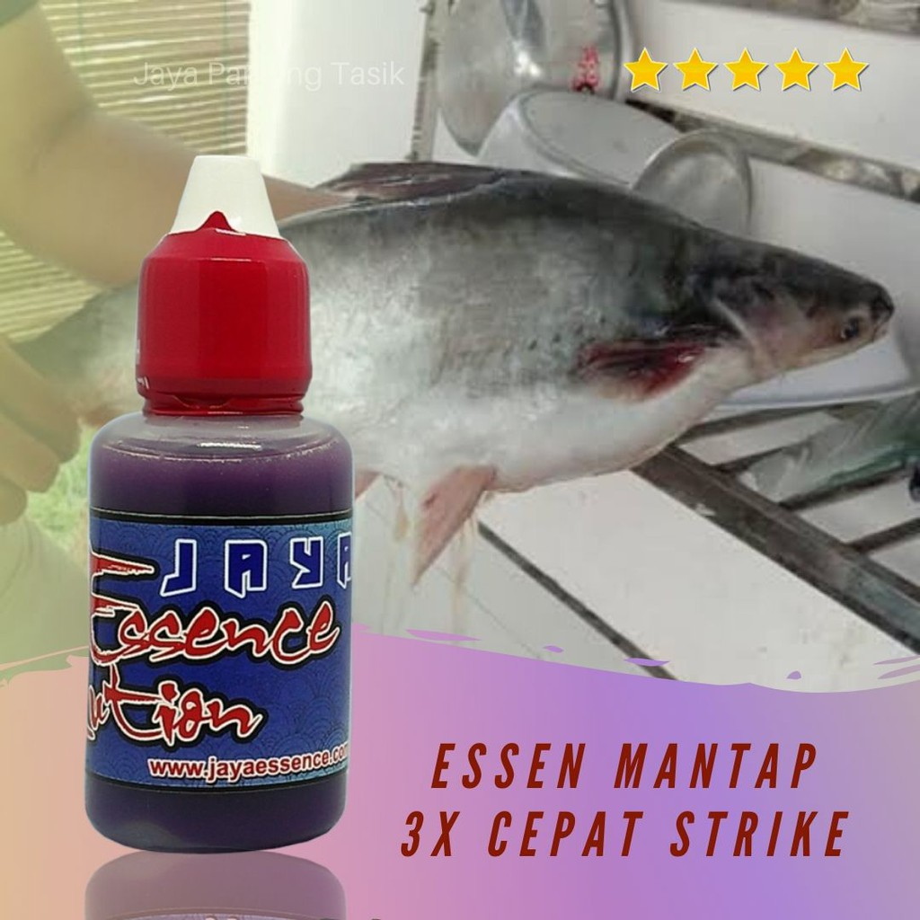 Jaya Essen Ikan Patin Bawal Galatama Kualitas Premium